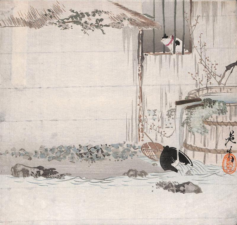 Cat in a Farmhouse Window with Kitchen Utensils being Washed in a Stream